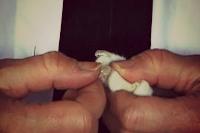 Druk de nagelkapjes zacht aan met uw duim.